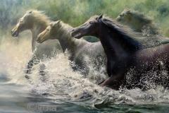 lydia-baarda-paarden-in-water